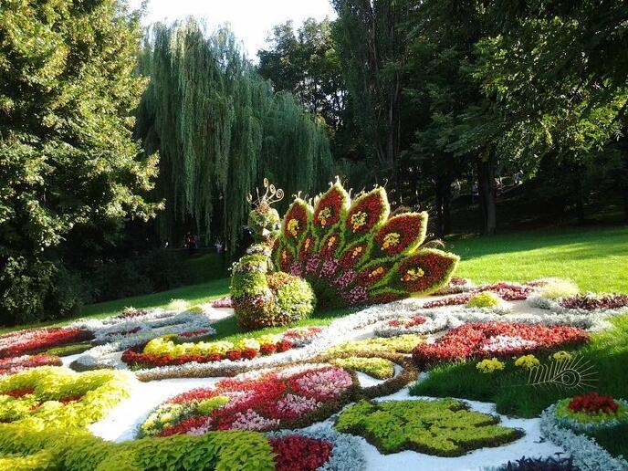 Авторські СТАТТІ ПОРАДИ від Dvi Zirky id493269438