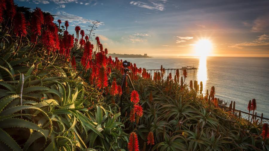 Дивовижна краса природи - частина 14  817761846