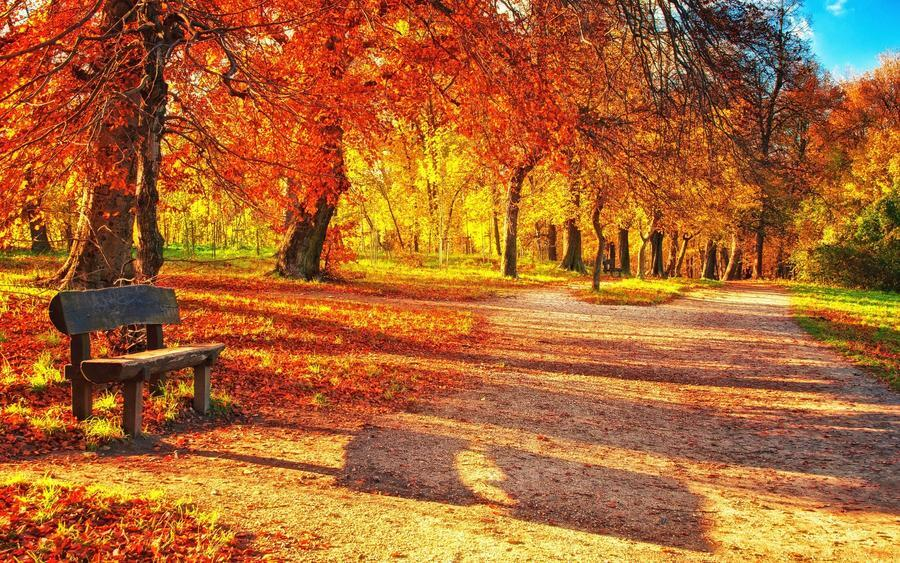 Дивовижна краса природи - частина 14  492804074