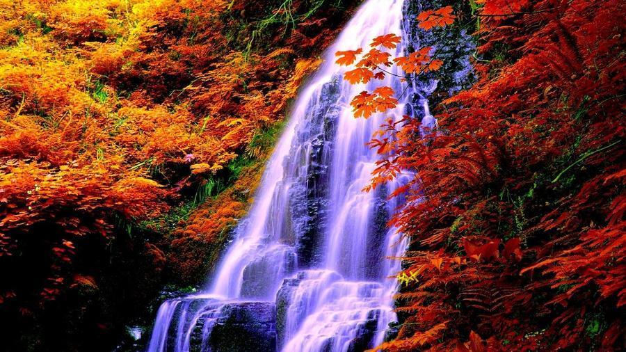 Краса природи  зачаровує - частина 2 Небо, Арт, Гори, Водоспад, Ліси, Ліс, Природа, Листя id1339807797