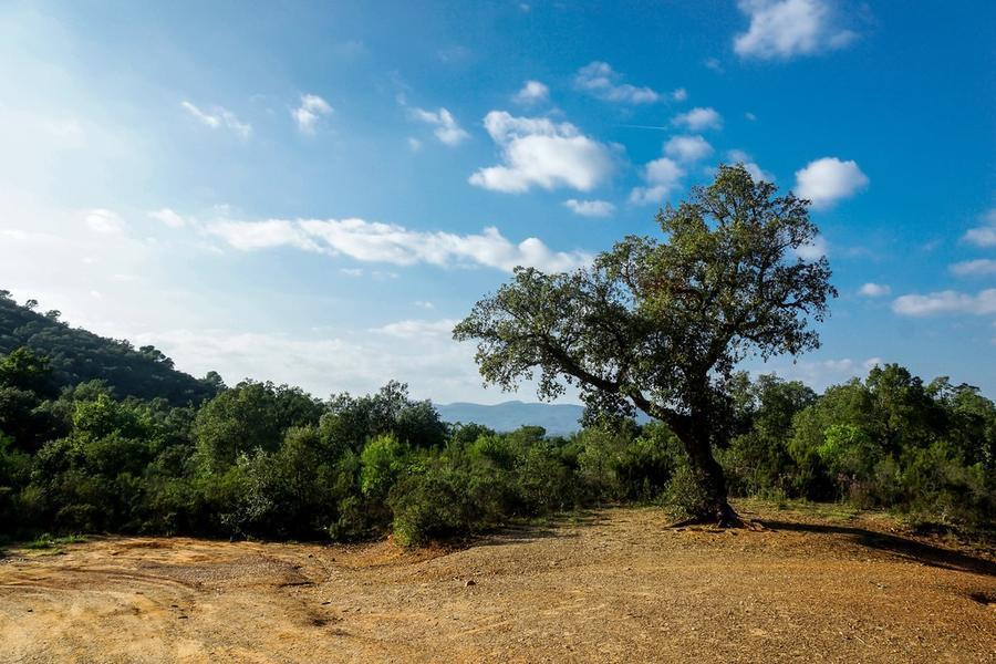 Шпалери - Прованс  - частина 5 Романтична зустріч, Франція, Прованс, Цікаві місця для побачень, Пам'ятки id495063350