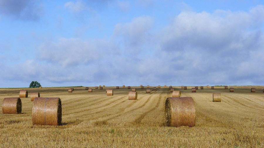 ФотоШпалери - Нормандія - Франція  - частина 14 Знайомства, Франція, Нормандія, Цікаві місця для побачень, Пам'ятки id469523510