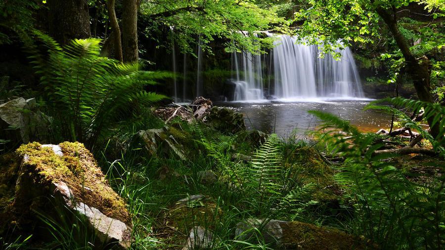 Дивовижна краса природи - частина 10 Небо, Гори, Озеро, Дерева, Ліс, Водоспад, Море, Океан, Схід, Захід id66726943
