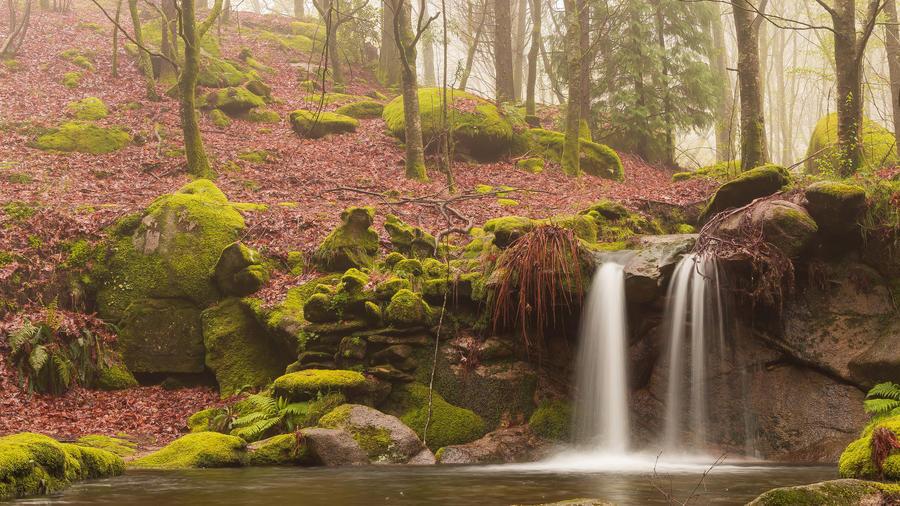 Дивовижна краса природи - частина 10 Небо, Гори, Озеро, Дерева, Ліс, Водоспад, Море, Океан, Схід, Захід id1175306914