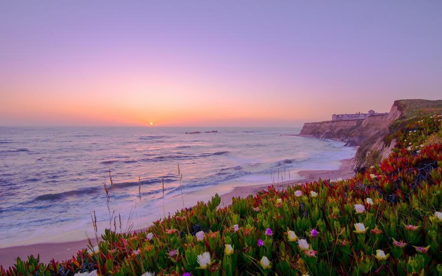 Дивовижна краса природи - частина 17 Пальми, Хвилі, Дерева, Парк, Море, Океан, Схід, Захід, Острів, Вода id1327662631