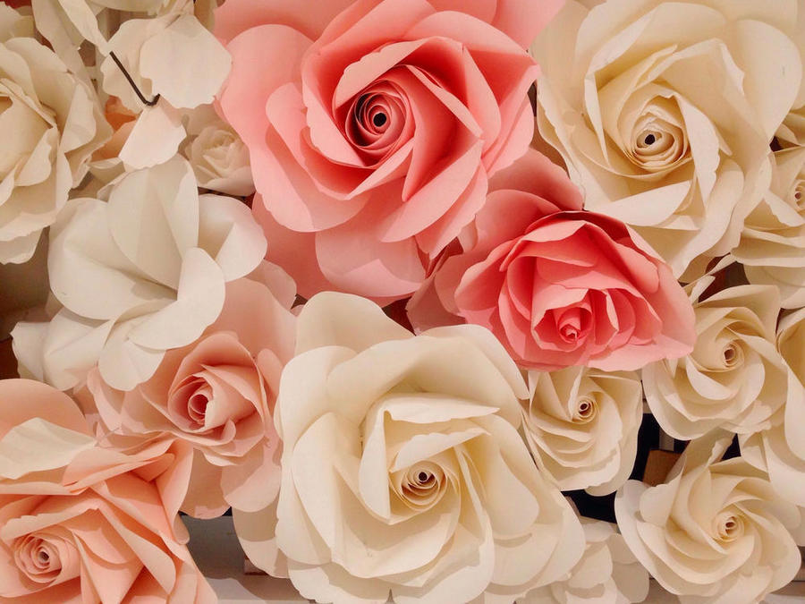 Чарівність троянд - частина 2 Ніжність, Краса, Природа, Квіти, Троянди, Білі троянди, Рожеві троянди, Любов / Кохання id458003412