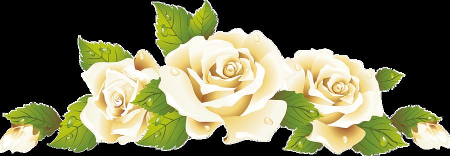 Чарівність троянд - частина 2 Ніжність, Краса, Природа, Квіти, Троянди, Білі троянди, Рожеві троянди, Любов / Кохання id590379982