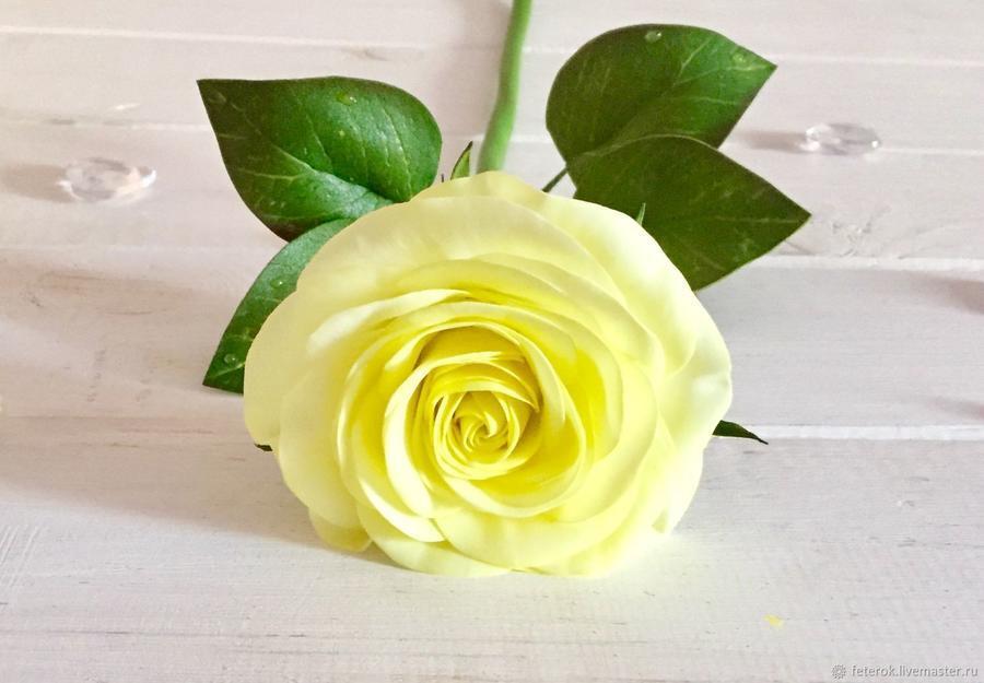 Чарівність троянд - частина 2 Ніжність, Краса, Природа, Квіти, Троянди, Білі троянди, Рожеві троянди, Любов / Кохання id527776596