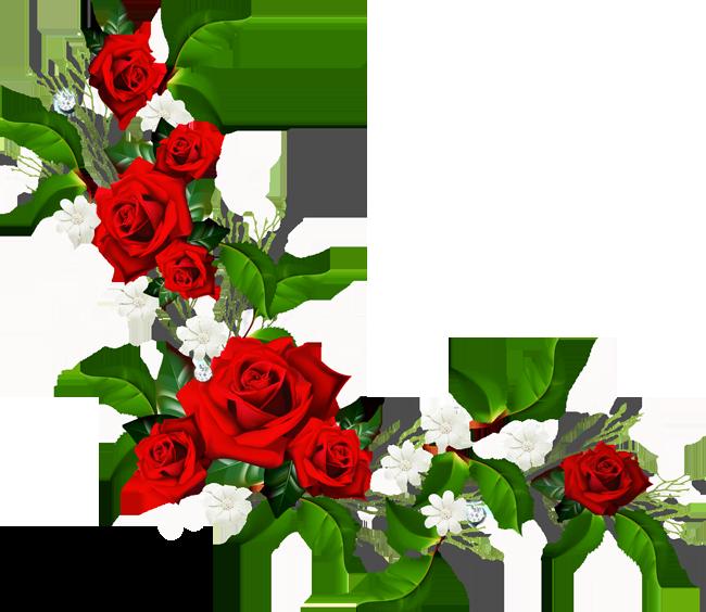 Чарівність троянд - частина 2 Ніжність, Краса, Природа, Квіти, Троянди, Білі троянди, Рожеві троянди, Любов / Кохання id492974634