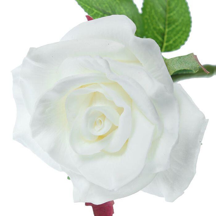 Чарівність троянд - частина 3 Ніжність, Краса, Природа, Квіти, Троянди, Білі троянди, Рожеві троянди, Любов / Кохання id1783851395