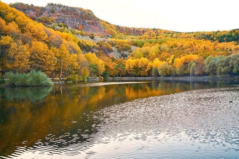Краса вересня - частина 6 Природа, Осінь, Дерева, Листя, Сонце, Гори, Позитив, Небо, Ліс, Царство Природи id1043665780