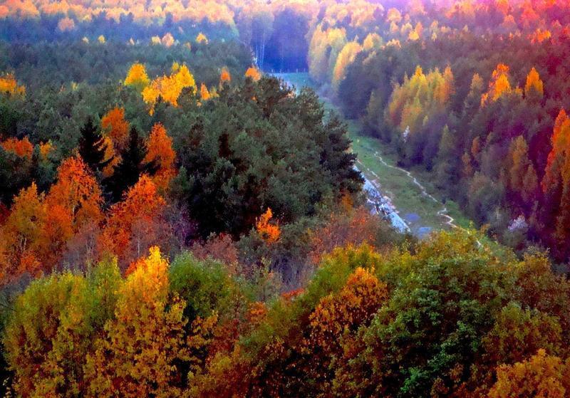 Краса вересня - частина 6 Природа, Осінь, Дерева, Листя, Сонце, Гори, Позитив, Небо, Ліс, Царство Природи id873911638