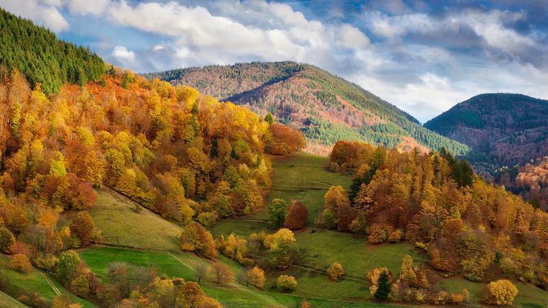 Краса вересня - частина 6 Природа, Осінь, Дерева, Листя, Сонце, Гори, Позитив, Небо, Ліс, Царство Природи id1417260762