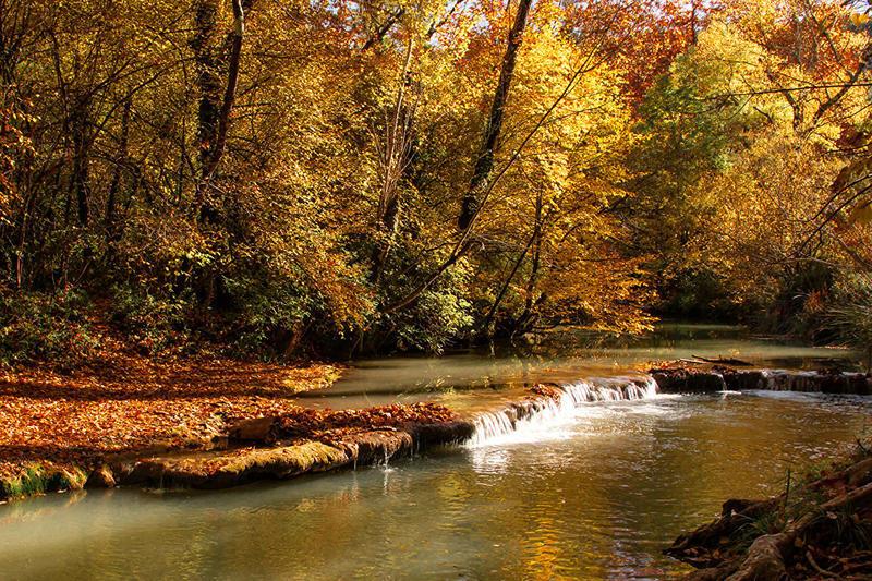 Краса вересня - частина 6 Природа, Осінь, Дерева, Листя, Сонце, Гори, Позитив, Небо, Ліс, Царство Природи id906302828