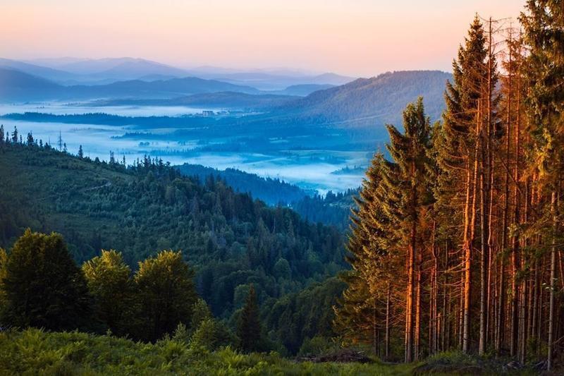 Краса вересня - частина 7 Природа, Осінь, Дерева, Листя, Сонце, Гори, Позитив, Небо, Ліс, Царство Природи id1322027155