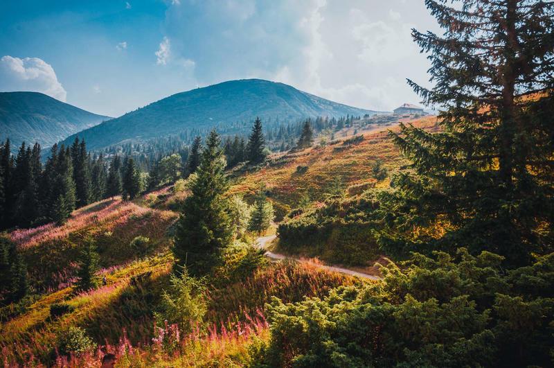 Краса вересня - частина 7 Природа, Осінь, Дерева, Листя, Сонце, Гори, Позитив, Небо, Ліс, Царство Природи id748691596