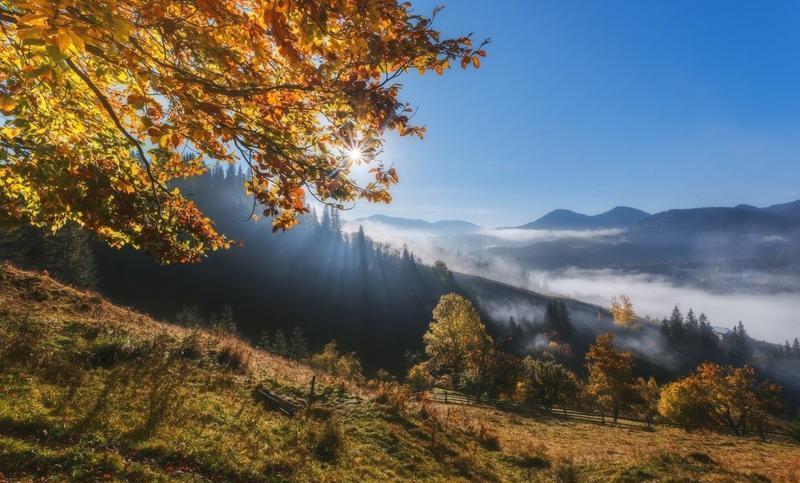 Краса вересня - частина 7 Природа, Осінь, Дерева, Листя, Сонце, Гори, Позитив, Небо, Ліс, Царство Природи id670331180