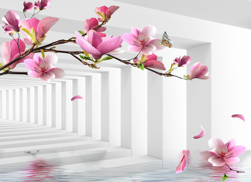 Знайомство з абстракцією 3d-  частина 1 Абстракція, 3D, Квіти, Краса, Мистецтво, ФотоШпалери, Магнолія, Троянди id827108719