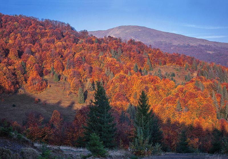 Краса жовтня - частина 17 Природа, Осінь, Жовтень, Дерева, Карпати, Схід, Сонце, Вода, Листя, Небо id278976648