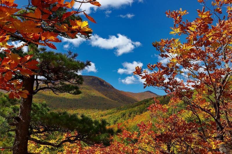 Краса жовтня - частина 17 Природа, Осінь, Жовтень, Дерева, Карпати, Схід, Сонце, Вода, Листя, Небо id513920903