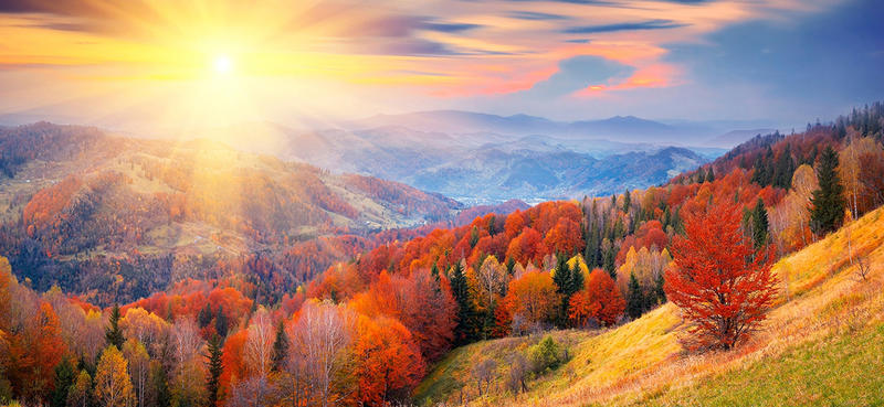 Краса жовтня - частина 17 Природа, Осінь, Жовтень, Дерева, Карпати, Схід, Сонце, Вода, Листя, Небо id117471398