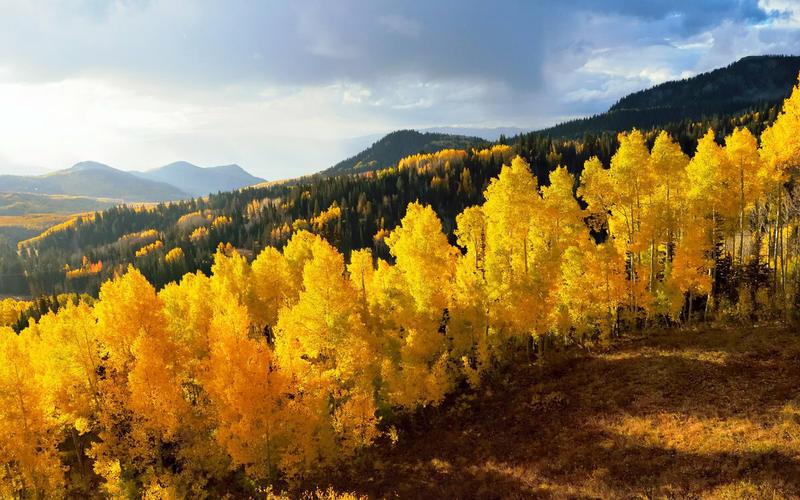 Краса жовтня - частина 17 Природа, Осінь, Жовтень, Дерева, Карпати, Схід, Сонце, Вода, Листя, Небо id84735385
