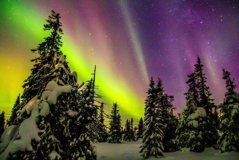Сяйво в небі Свята, Новий рік, Дві Зірки, Лапландія, Різдво, Чоловіки, Жінки, Північне сяйво, Позитив, Відпочинок id246830976