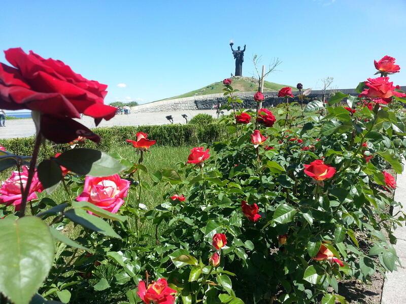 Знайомства Черкаси. Долина троянд Цікаві місця для побачень, Природа, Парк, Троянди id1763370646