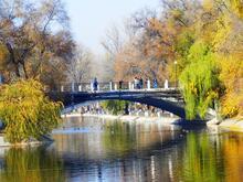 Знайомства Дніпро. Романтична зустріч і найцікавіші місця. id1228038095