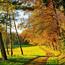 Краса вересня - частина 3 Природа, Осінь, Дерева, Листя, Сонце, Гори, Позитив, Небо, Ліс, Царство Природи id1822261316