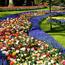 Dating Netherlands. Garden of Europe - Keukenhof Цікаві місця для побачень, Netherlands, Flowers, Park, Dating, Dvi Zirky, 12dz.com id1801655173