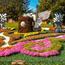 Онлайн Знайомства Київ. Виставка квітів Цікаві місця для побачень, Романтична зустріч, Виставка квітів id89159574
