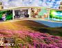 New feature on website DVI ZIRKY!