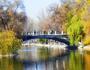 Знайомства Дніпро. Романтична зустріч і найцікавіші місця. id779521506