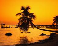 Дивовижна краса природи - частина 17 Пальми, Хвилі, Дерева, Парк, Море, Океан, Схід, Захід, Острів, Вода id144641375