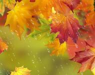 Краса вересня - частина 1 Природа, Осінь, Дерева, Листя, Сонце, Гори, Позитив, Небо, Ліс, Царство Природи id817138355