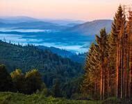 Краса вересня - частина 7 Природа, Осінь, Дерева, Листя, Сонце, Гори, Позитив, Небо, Ліс, Царство Природи id418853338