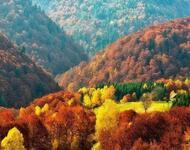 Краса жовтня - частина 17 Природа, Осінь, Жовтень, Дерева, Карпати, Схід, Сонце, Вода, Листя, Небо id1759014166