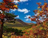 Краса жовтня - частина 17 Природа, Осінь, Жовтень, Дерева, Карпати, Схід, Сонце, Вода, Листя, Небо id952231045