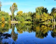 Знайомства Тернопіль. Мальовничі парки та сквери Цікаві місця для побачень, Тернопільське озеро, Мальовничі парки та сквери Тернополя id1325313773
