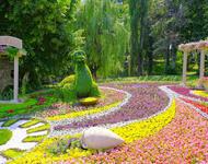 Онлайн Знайомства Київ. Виставка квітів Цікаві місця для побачень, Романтична зустріч, Виставка квітів id1333873865