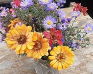 Цветы. Волшебная осень.  Природа, Цветы, Позитив, Каталог Сайтов, Осень id973874085