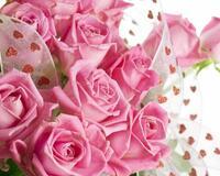 Квіти любові - частина 2 Троянди, Сад, Любов, Природа, Квіти id1520281039