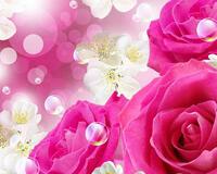 Вітання для Матусь частина 1 Троянди, Матуся, Любов, Вітання, Квіти, Фантазія id410935196