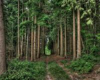 ФотоШпалери - Нормандія - Франція  - частина 14 Знайомства, Франція, Нормандія, Цікаві місця для побачень, Пам'ятки id1829304890