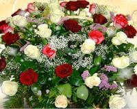 Чарівність троянд - частина 3 Ніжність, Краса, Природа, Квіти, Троянди, Білі троянди, Рожеві троянди, Любов / Кохання id189126333