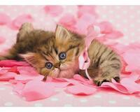 Позитивні емоції - частина 1 Природа, Тварини, Кіт, Кішка, Коти, Любов, Позитив, Емоції, Кошик, Царство Природи id1646723680