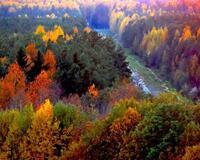 Краса вересня - частина 6 Природа, Осінь, Дерева, Листя, Сонце, Гори, Позитив, Небо, Ліс, Царство Природи id439554045