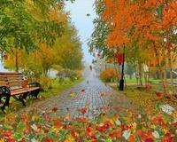 Краса жовтня - частина 8 Природа, Осінь, Жовтень, Дерева, Парк, Схід, Сонце, Вода, Листя, Небо id609896619
