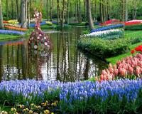 Знайомства Нідерланди. Королівський парк  Цікаві місця для побачень, Нідерланди, Квіти, Парк, Знайомства, Дві Зірки, 12dz.com id2057220871